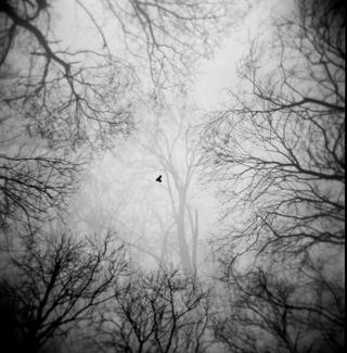 © piotr wasilkowski