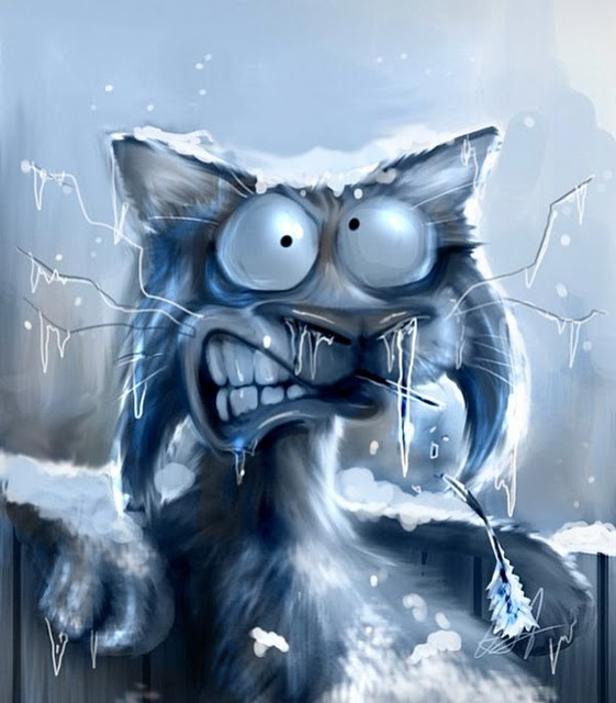 http://www.ljplus.ru/img4/k/v/kv_nn_sa/cat_winter.jpg
