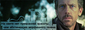 http://www.ljplus.ru/img4/l/u/lucy_at_the_sky/03x12-one_day_one_room0034.png
