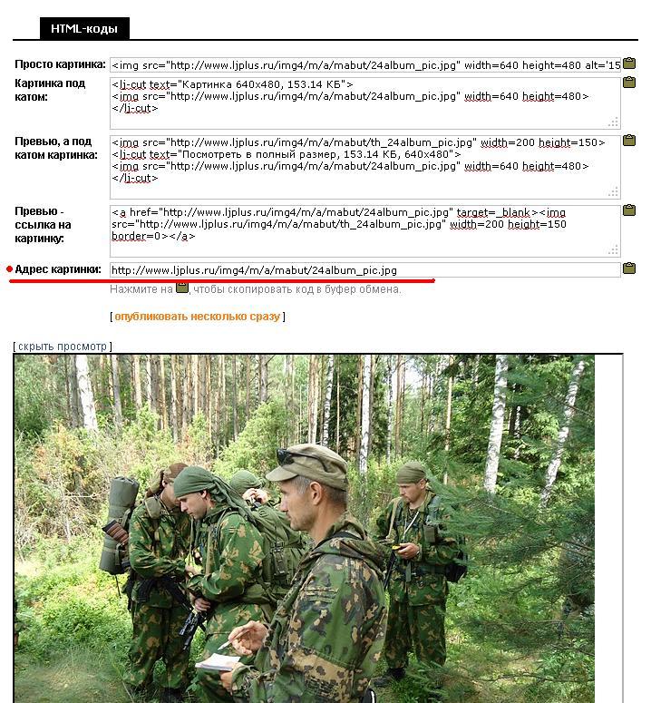 http://www.ljplus.ru/img4/m/a/mabut/4444444444.JPG