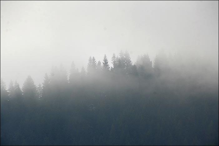 Гори в Криворівні взимку