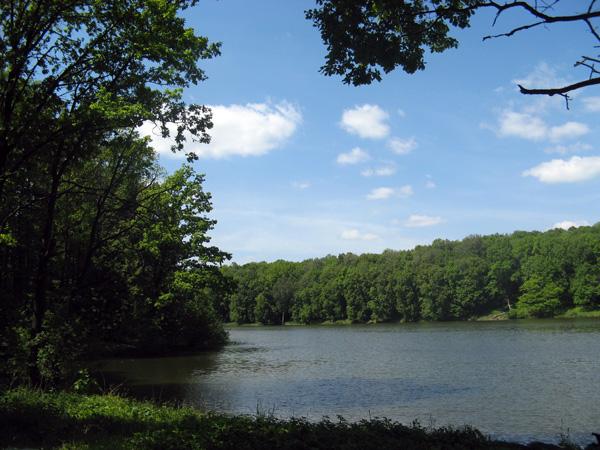 реки тульской области рыболовные места
