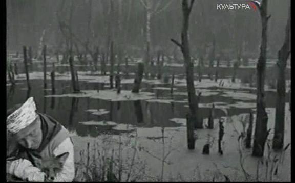 Порно фильмы сисстой девочки с узкой дырочкой фото 694-789