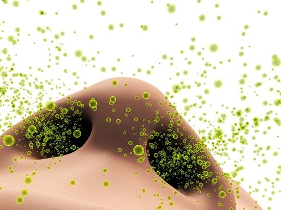 Аллергия на плесень: как спастись?