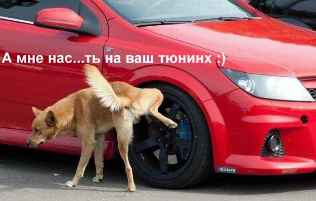 47.72 КБ