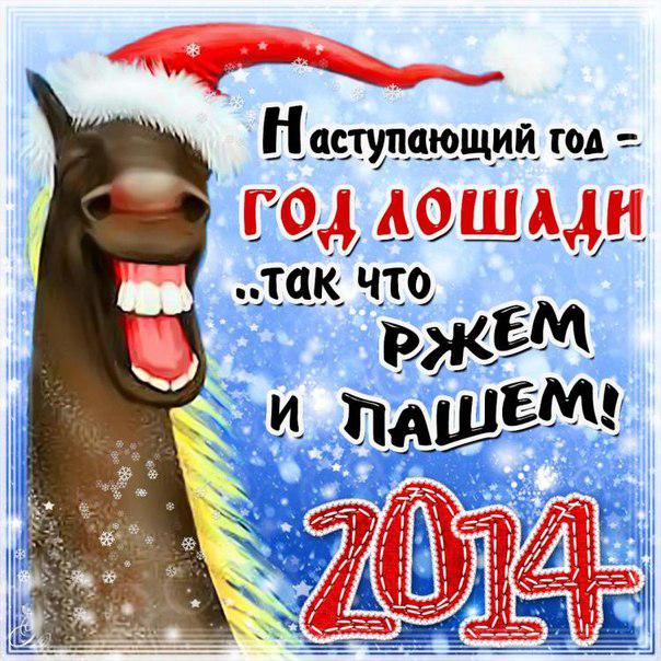 С Новым Годом, лошади!
