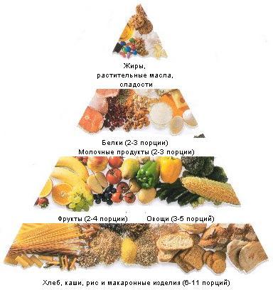 функции здорового образа жизни