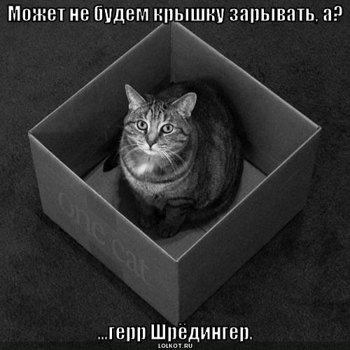 Кот и живой и мертвый одновременно