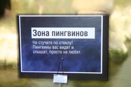 105.78 КБ