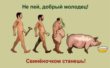 http://www.ljplus.ru/img4/s/c/scinic/1238621282_alko.jpg