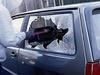 Количество краж авто в РФ растет