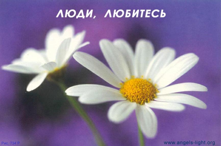 Русские лесьиянки бесплатно 21 фотография