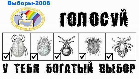 http://www.ljplus.ru/img4/t/e/testmodule_01/_golosuy2008.jpg