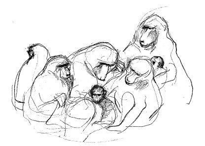 http://www.ljplus.ru/img4/t/o/togo/baboons.JPG