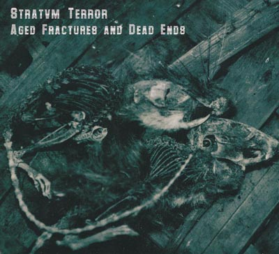 (Noise) Stratvm Terror - Aged Fractures And Dead Ends - 2012, FLAC (image+.cue), lossless