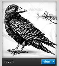 halloween raven engraving drawing