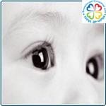 Общество: Фонд «Серце до серця» допомагатиме маленьким житомирянам з вадами зору
