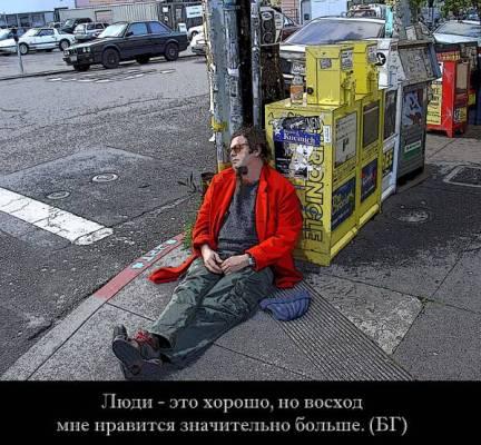 44,86 КБ