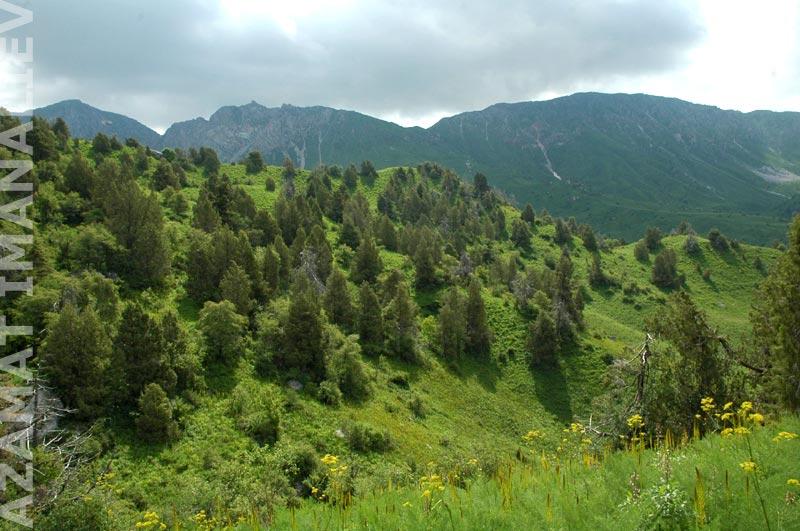 Биосферная территория Сары-Челек