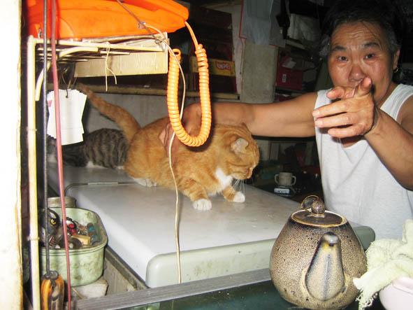 Говорят, что животные как правило очень похожи на своих хозяев. Только не китайские... :-)