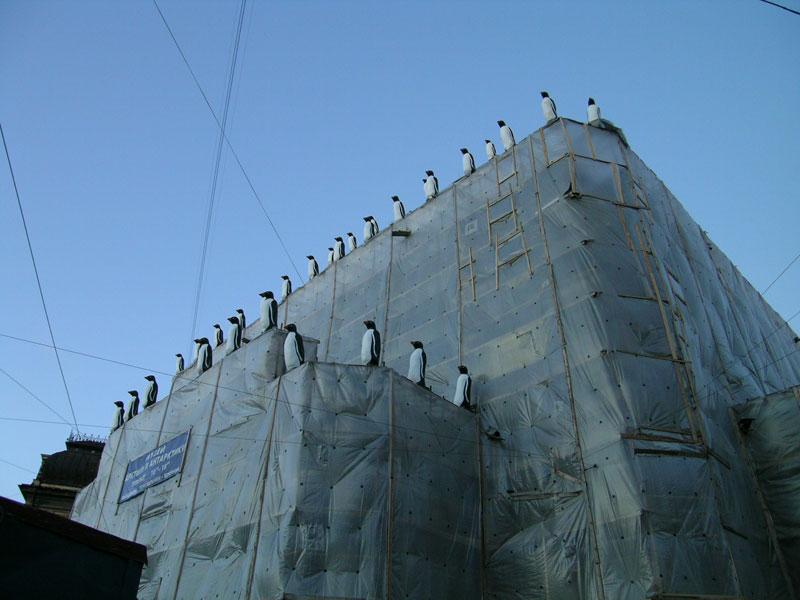 пингвины =)