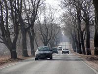 Типичный вид областных дорог