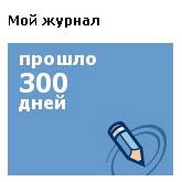 моему журналу 300 дней