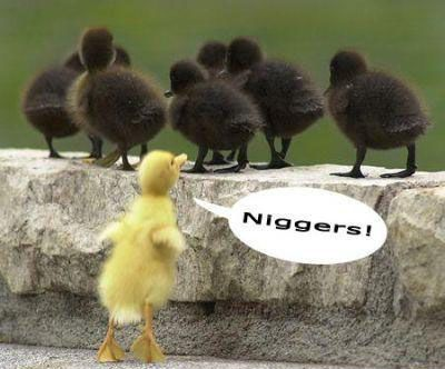 No tolerance!