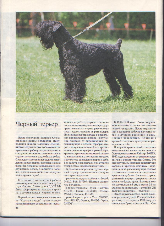 http://www.ljplus.ru/img3/u/p/upiter777/Izobrrgn76azhenie-005.jpg