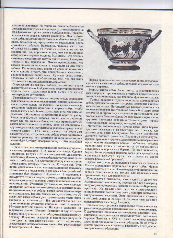 http://www.ljplus.ru/img3/u/p/upiter777/_Izobrazhenie-010.jpg