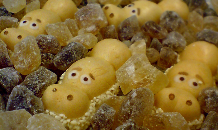Бегемотики в леденцовом сахаре