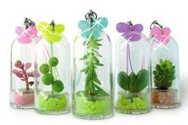 Брелок с растением внутри