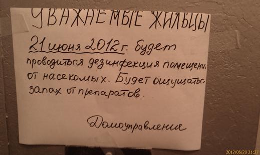 31.00 КБ