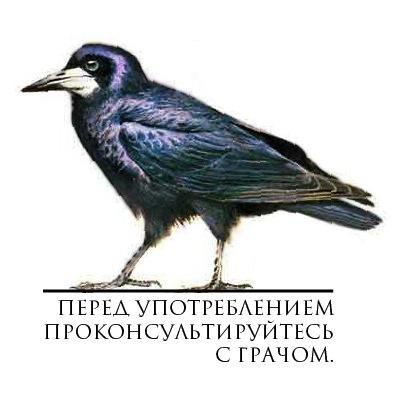 38.23 КБ