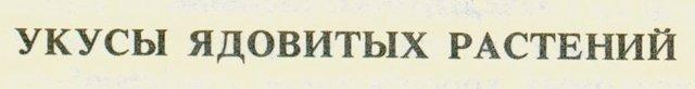 10,29 КБ