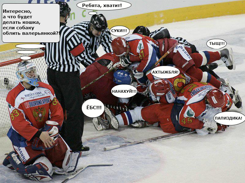 только смешные картинки про хоккеистов кто