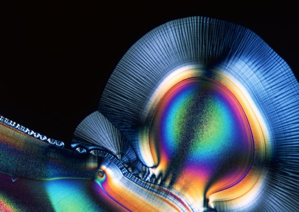 Под микроскопом загрузить