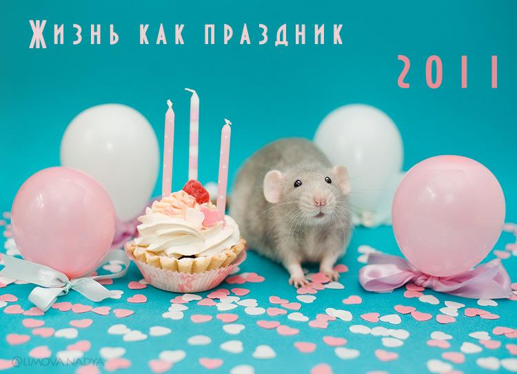 Крысы в картинках праздничных