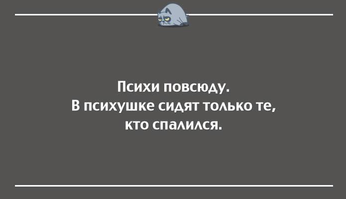 11.68 КБ