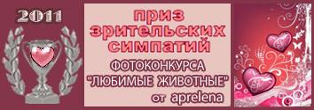 75.01 КБ