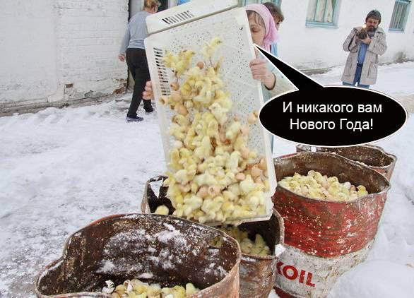 77.01 КБ