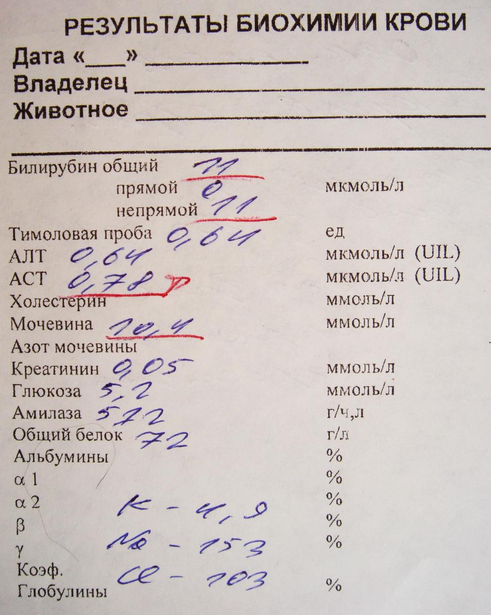 Анализ крови на стерильность москва медицинская справка форма аку-22