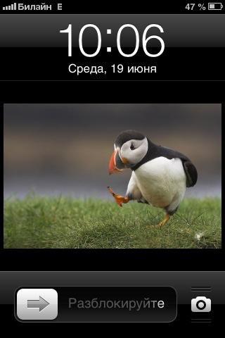 133.71 КБ