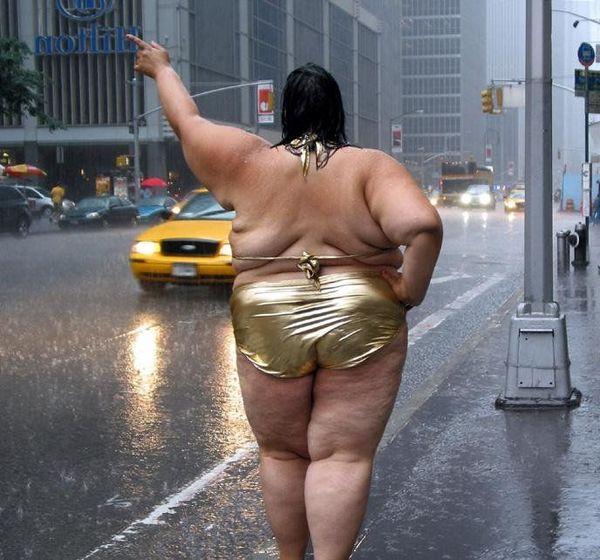 Смешные картинки жирных