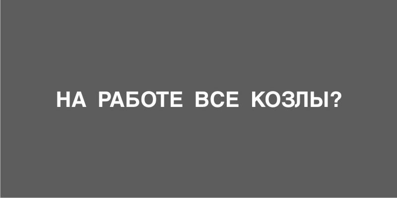 13.67 КБ