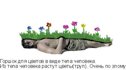 31.39 КБ
