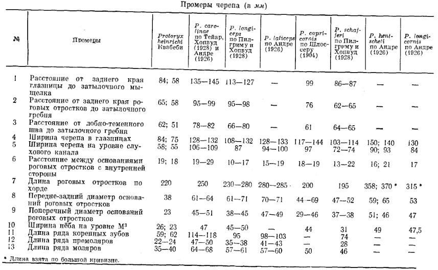 https://www.ljplus.ru/img4/d/o/doctor_insulin/protoryx2.JPG