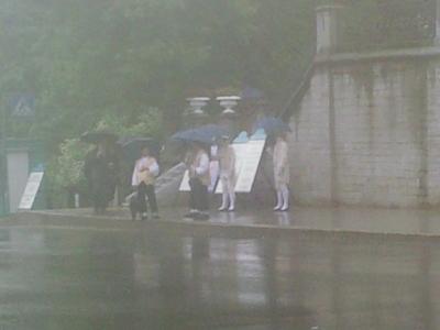 Холуи под зонтами