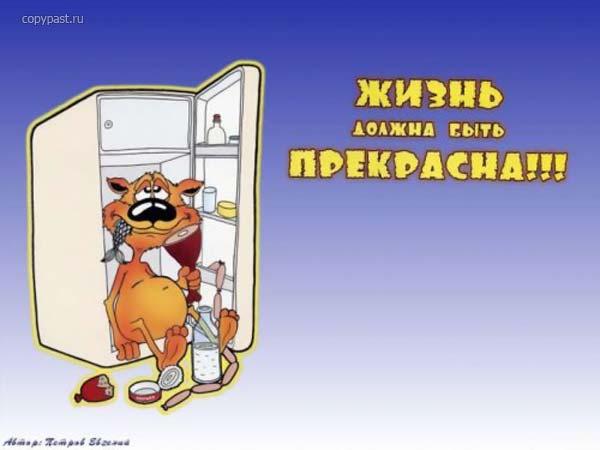 26.50 КБ