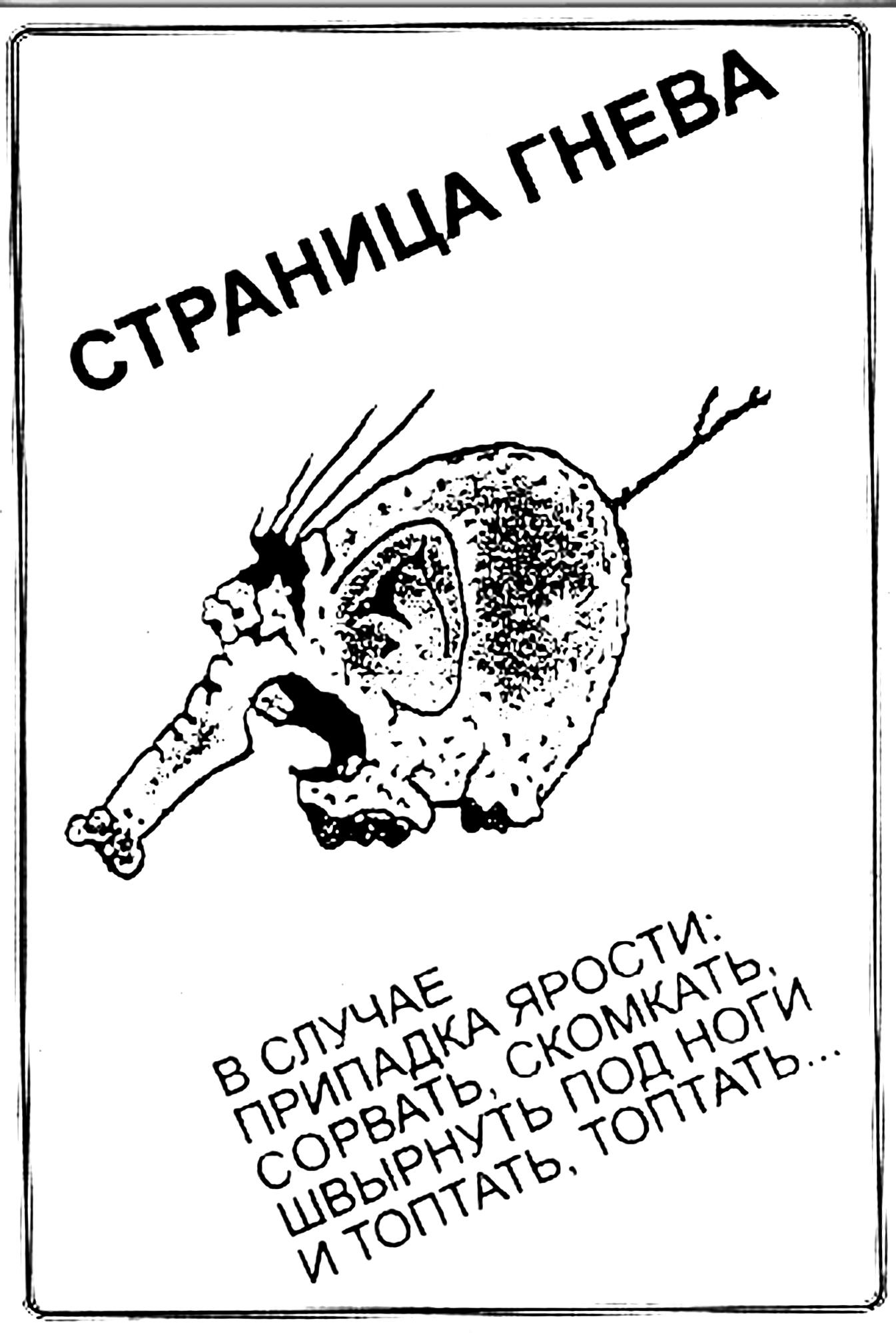 558.70 КБ